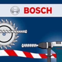 Logo-BoschBSS-Torex